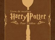 harry potter, poudlard, sorcier, magie, recette, recipe, livre, book, cuisine, g^^ateau, desert, bierreaubeurre, chocogrenouille, cadeaux